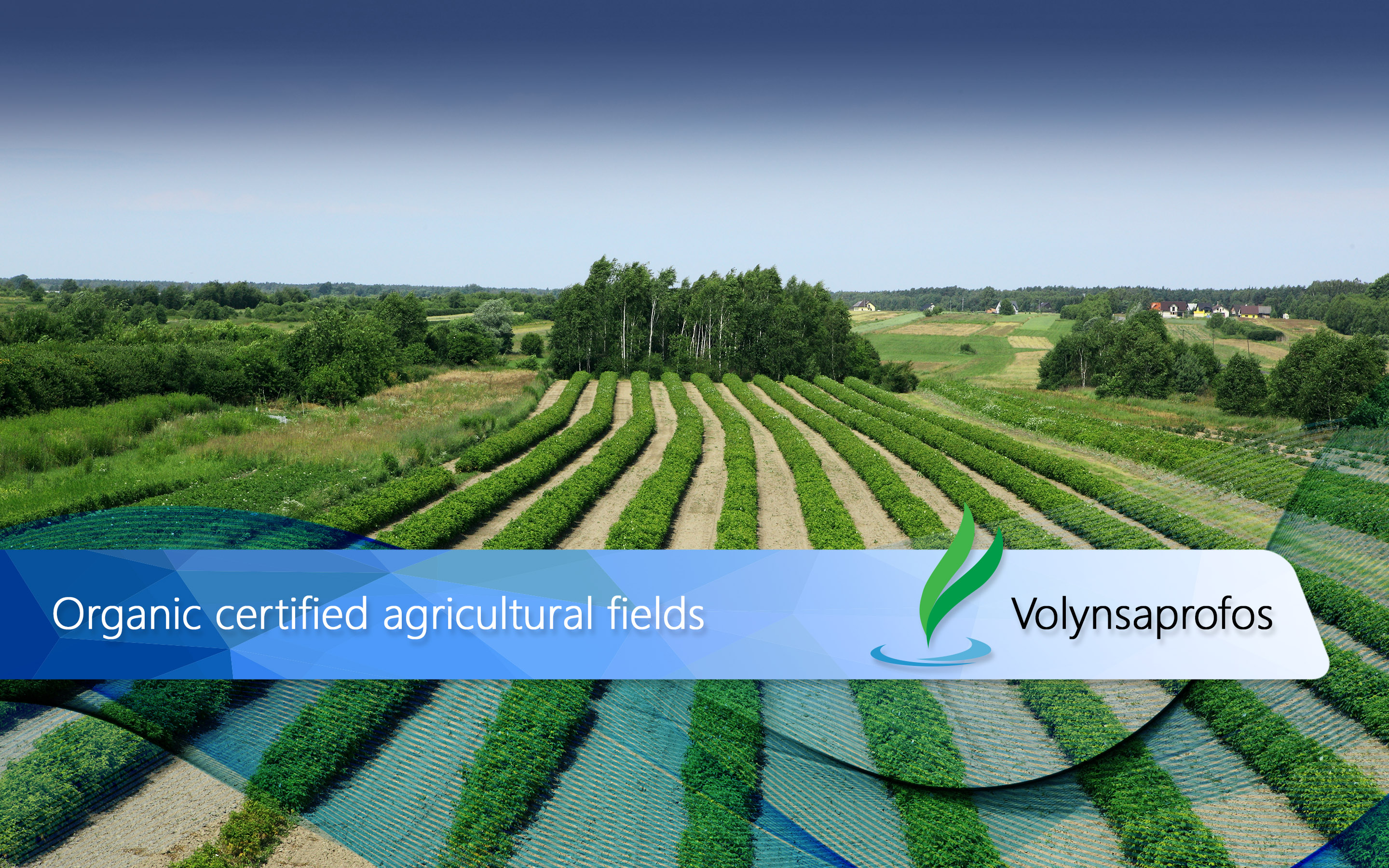 2-Organic-certified-agricultural-fields